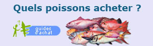 Quels poissons acheter ?