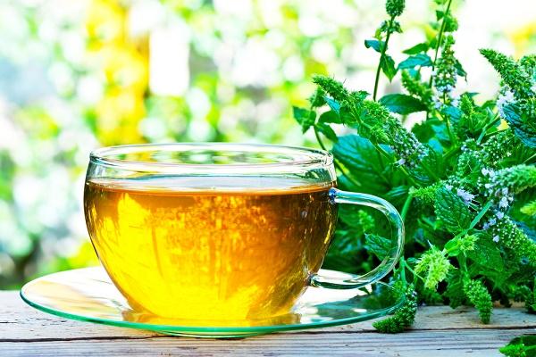 thé et aspirine pour embellir vos plantes