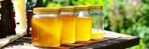 recette-soupe-miel-ban