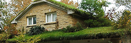 Les toits végétaux : ça pousse !