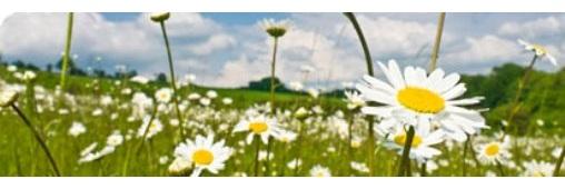 Les sols, fondements de la biodiversité