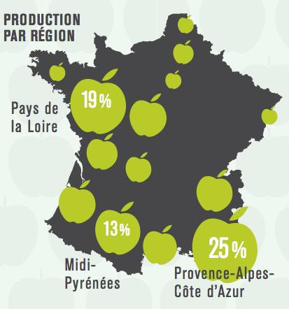 production-pommes-france-région
