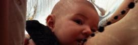 Bébés : allaiter, c'est la santé !