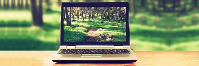 E-commerce : quand économie rime avec écologie