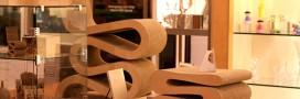 Des meubles en carton? idée canon!