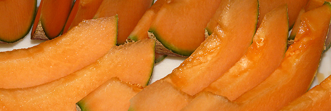 melon-fruit-ete-ban