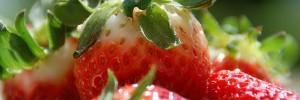 10 aliments pour vivre plus longtemps