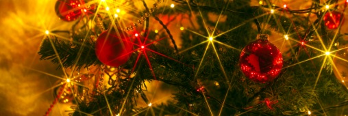 Je compense mon sapin de Noël avec un arbre virtuel