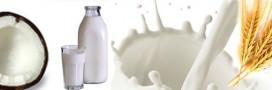 Laits végétaux: alternatives aux laits animaux