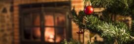 Menu: un repas de Noël classique et 100% bio