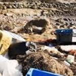 Plastiques, pétrole ... Les Océans agonisent sous les déchets....
