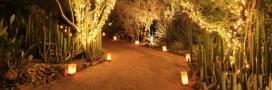Comment éclairer son jardin de manière écologique