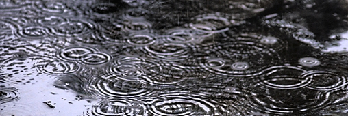 Les pluies acides, disparues du ciel ?