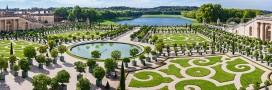 Chasser les taupes? interview du taupier de Versailles