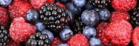 Manger de saison en août: la fiche pratique