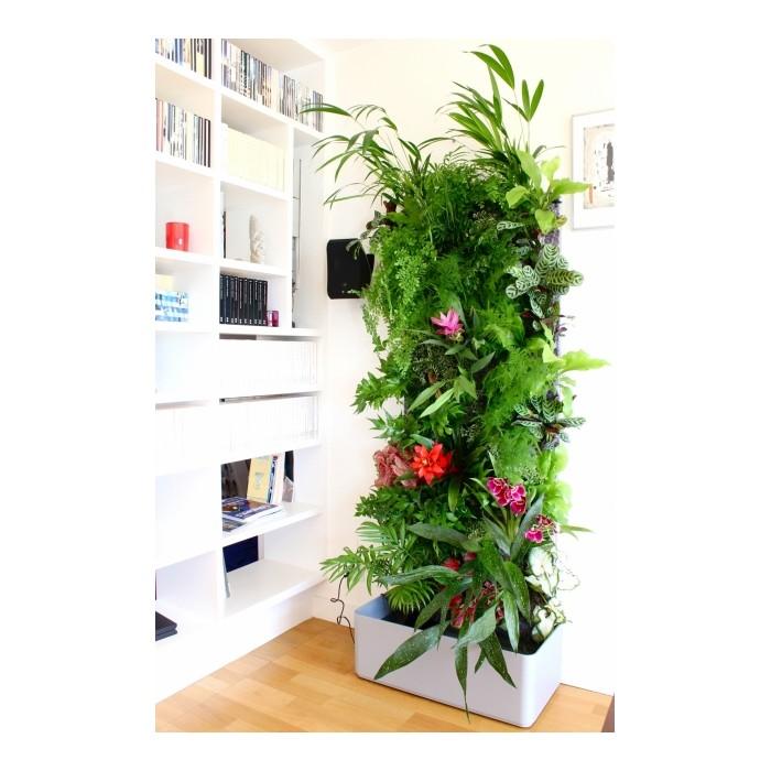 Ordinary Plantes Pour Mur Vegetal Exterieur #4: 2321-10083-thickbox.jpg