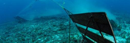 36 heures pour stopper la dévastation des océans