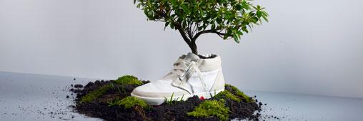 Les baskets biodégradables et à planter de Oat !