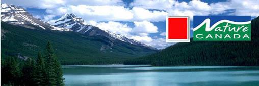 Carton rouge au Canada qui sort de Kyoto