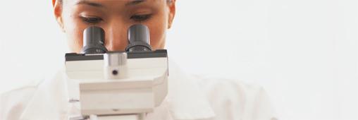 Le lien entre bisphénol A et cancer du sein confirmé