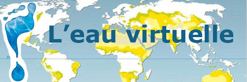 L'eau virtuelle, on en mange plus qu'on en boit !