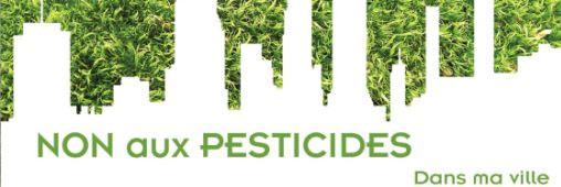 Semaine sans pesticides : Blois sème en ville !
