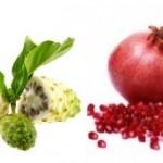 À la découverte des super fruits...