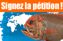 La pêche en eaux profondes