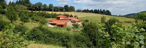 Tourisme vert ; une ferme vous accueille