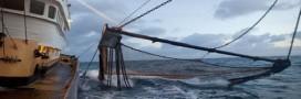 Les subventions au carburant dopent la pêche au grand large