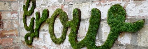 Tags et Graffiti : tendance écologique