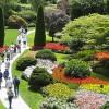 Hortithérapie, le bien-être au jardin