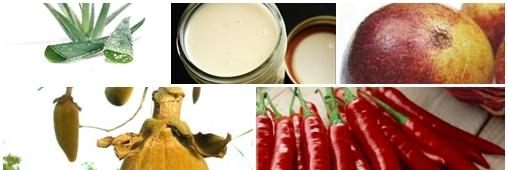 """La revue des """"super aliments"""" les plus utiles"""