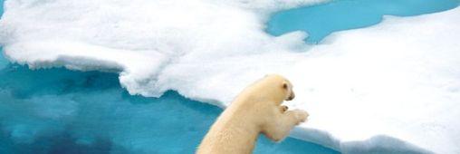 Arctique. Le changement climatique en images