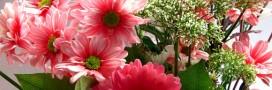 Comment conserver un joli bouquet?