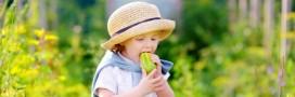 Comment faire manger des légumes et plus de fruits aux enfants?