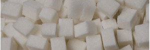 xylitol-sucre-substitut-ban