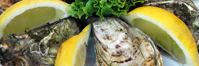 huitre-mollusque-crustace-reveillon-alimentation-00-b-ban