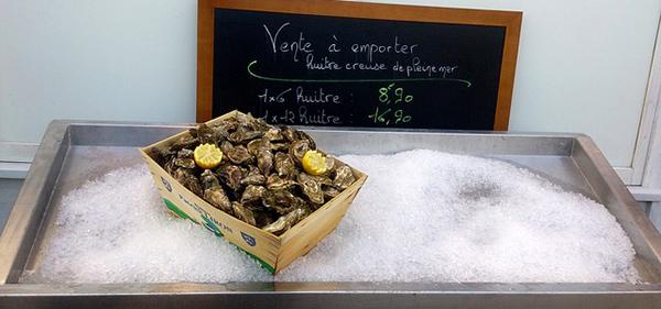 huitre-mollusque-crustace-reveillon-alimentation-02