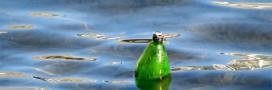 Que faire pour moins polluer l'eau?