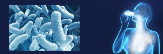 probiotiques-copie.jpg