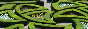 Bio au château de Villandry : le chef-jardinier témoigne