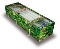 Cercueil biodégradable