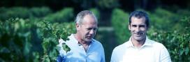 Éthique & Nature, un nouveau label pour le vin de Bordeaux