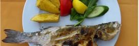 Manger du poisson allonge la vie des seniors