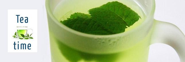 the-vert-menthe-sante.jpg