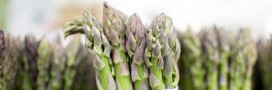 L&#039;asperge, le lgume de printemps