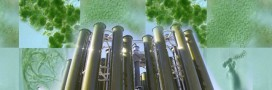Acta Alga révolutionne le biocarburant de microalgues