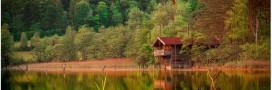 Cabane au vert