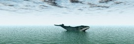 Atlantique sud: non au sanctuaire baleinier et non au Japon